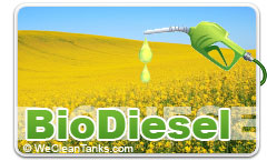 Bio Diesel Fuel Tank Preparation and Cleaning